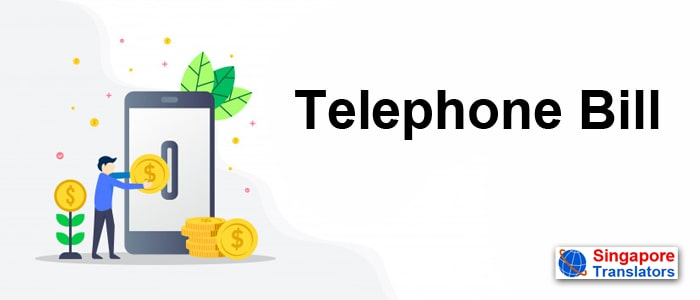 Telephone Bill language translaation